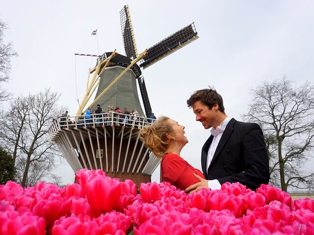 Keukenhof - spring time layover in Amsterdam